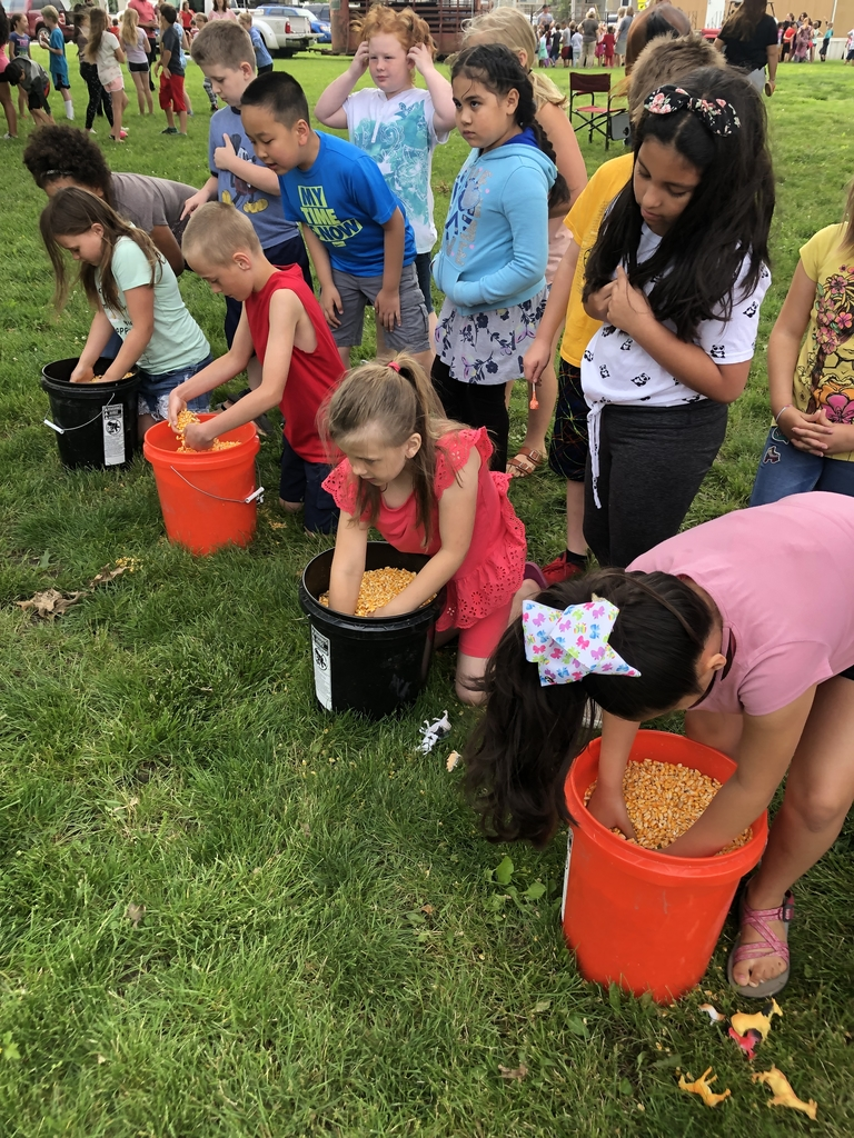 Digging for treasure in corn!